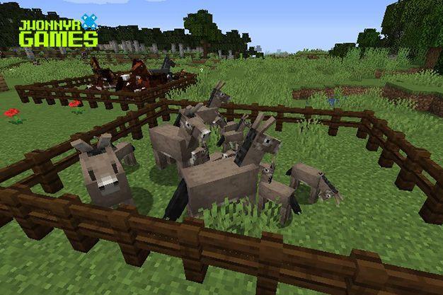 Aparear burros en Minecraft