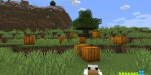 Calabazas en Minecraft
