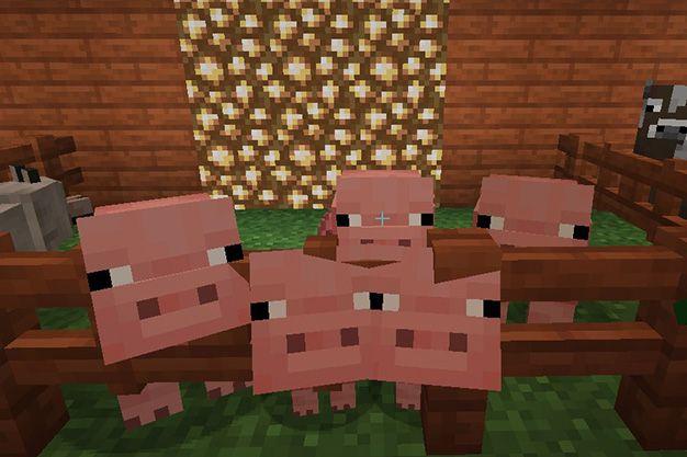 Como atraer cerdos en Minecraft
