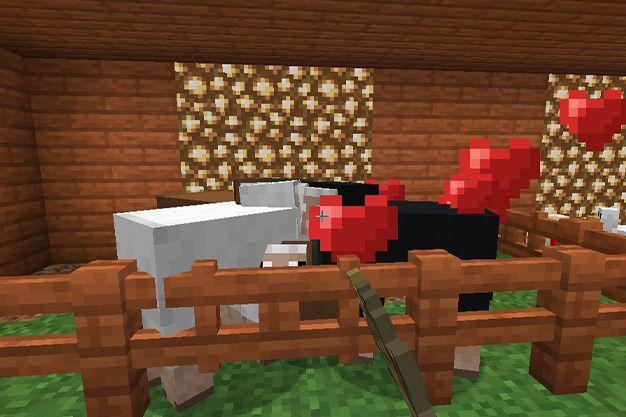 Como atraer ovejas en minecraft