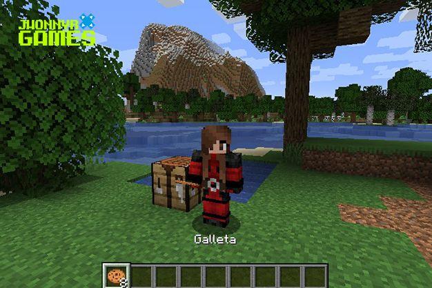 Galleta Minecraft