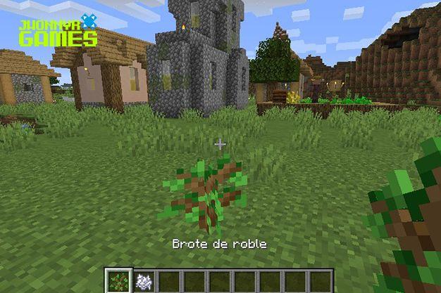 Pasos para plantar un árbol en Minecraft