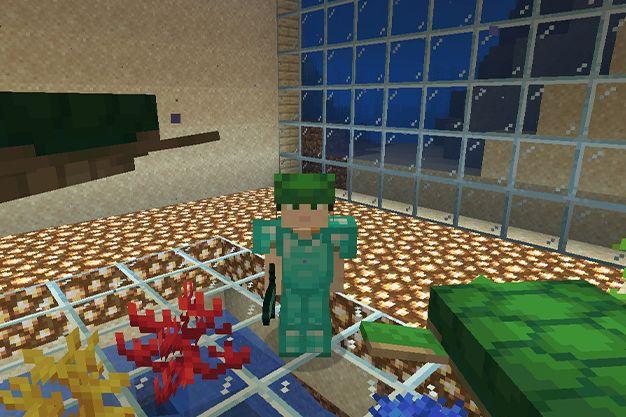 caparazón de tortuga en minecraft